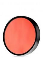 Акварель компактная восковая Make-Up Atelier Paris F29 Лосось запаска 6 гр: фото