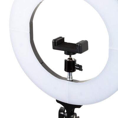 Лампа кольцевая светодиодная 12' Lucas' Cosmetics, белая: фото